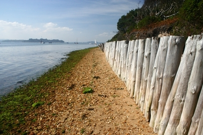Coastal Walks at Brownsea Island
