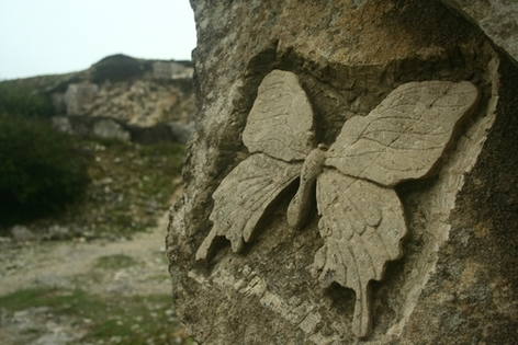 Butterfly carving at Tour Quarry